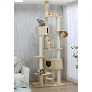 Happy cats on a spacious and sturdy, well made tree!